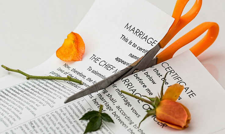 marriage license cut in half with roses